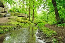 Free Picturesque Park Stock Photography - 18629542