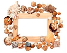 Holiday Beach Concept With Shells Stock Image