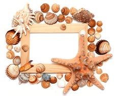Holiday Beach Concept With Shells Royalty Free Stock Photo