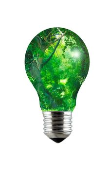 Free Enchanted Forest Lightbulb Royalty Free Stock Image - 18631556