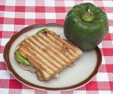 Free Panini Sandwich Stock Photos - 18633203