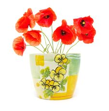 Free Red Poppies Royalty Free Stock Photos - 18636578