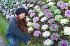 Young Woman Sitting To Cauliflower Garden Stock Images