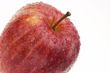Organic Gala Apple Covered With Drops Of Water Royalty Free Stock Image