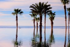 Free Luxurious Swimming Pool Royalty Free Stock Photos - 18656838