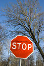 Free Road Sign Stop Stock Photo - 18669350