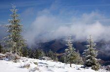 Free Winter Landscape Royalty Free Stock Photo - 18660735