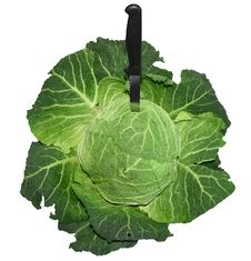 Free Savoy Cabbage With A Knife Royalty Free Stock Image - 18662246