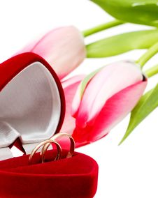 Beautiful Spring Tulips And Wedding Rings Stock Image