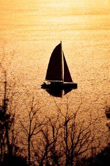 Free Catamaran On Sunset Stock Image - 18662841