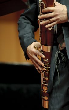 Free Bassoonist On Concert Stock Images - 18663884