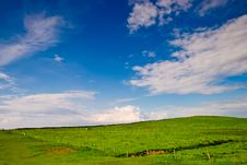 Free Meadow Under Blue And Cloudy Sky In Ireland Stock Image - 18664721