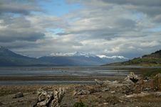 Free Beagle Channel 2 Stock Photo - 18665130