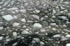 Floating Ice Royalty Free Stock Images