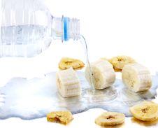 Free Rehydration Stock Photo - 18666750
