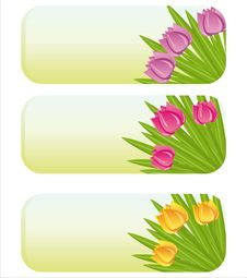 Free Spring Banners With Tulips Stock Image - 18669361