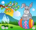 Free Meadow With Bunny On Easter Egg Royalty Free Stock Photos - 18671668