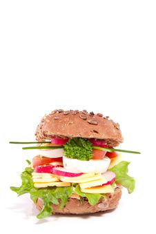 Free A Rich Healthy Brown Sandwich Stock Image - 18672341