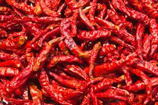 Free Dried Chili Royalty Free Stock Photos - 18674108