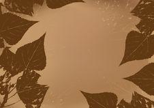 Free Foliage Frame Stock Photos - 18674573