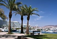Free View On Resort Hotels, Eilat, Eilat Royalty Free Stock Photography - 18678927