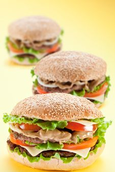 Three Delicious Hamburger Stock Photos
