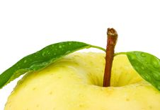 Free Fresh Yellow Apple With Leaf. Stock Photography - 18680672