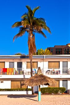 Free Palm In Front Of Motel At The Beach Royalty Free Stock Photos - 18681248