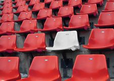 White Seat In Red Seats Stock Image