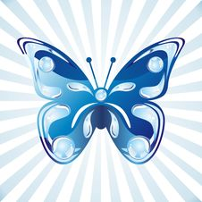 Free Vector Butterfly Royalty Free Stock Images - 18681389
