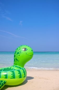Sea Turtle Swimming Tube On The Beach Stock Image