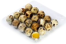 Free Quail Eggs Stock Photo - 18685210