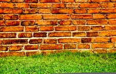 Free Green Grass And Brick Wall Royalty Free Stock Image - 18688686