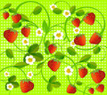 Free Strawberry On Green Stock Images - 18690064