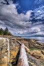 Free Rocky Coastline Royalty Free Stock Images - 18694569