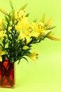 Free Yellow Flowers Royalty Free Stock Photos - 18698658