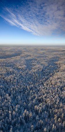 Free Top View Forest Plain In A Frosty Day Stock Images - 18690534