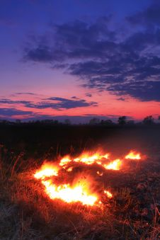 Free Spring Fires In A Field Royalty Free Stock Photos - 18691528