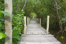 Free Wood Path Royalty Free Stock Images - 18691639