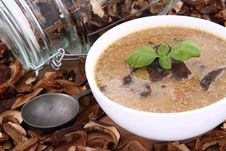 Free Mushroom Soup And Dried Mushrooms Royalty Free Stock Photography - 18692667