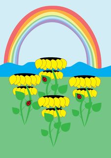 Sunflowers And Rainbow Royalty Free Stock Image