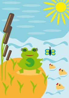 Free Frog Under The Sun On A Pond Stock Images - 18693494