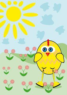 Free Small Cartoon Chicken Royalty Free Stock Photography - 18693687