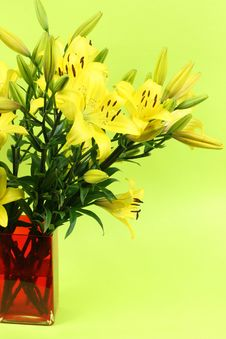 Free Yellow Flowers Royalty Free Stock Photos - 18698658