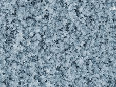 Free Hoar-frost Tonemapped Royalty Free Stock Image - 1873816