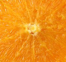 Free Orange Close Up Royalty Free Stock Image - 1874036