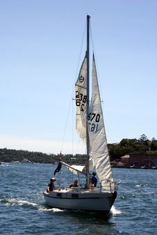 Sail Boat In Sydney Harbour Stock Images
