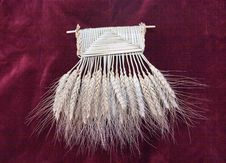 Free Wheats. Stock Photo - 1876150