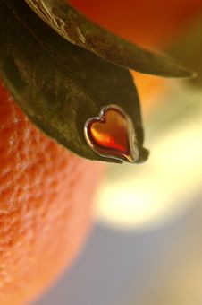 Free Bright Heart On Orange Leaf Stock Photography - 1878342