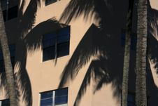 Free Building With Palm Trees Royalty Free Stock Photography - 1878517